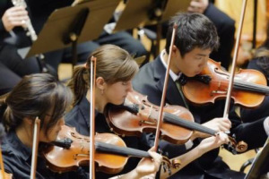 Violins wyso-youth-orchestra-violins